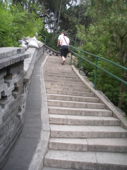 There were many steps