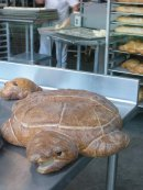 A sourdough tortoise!