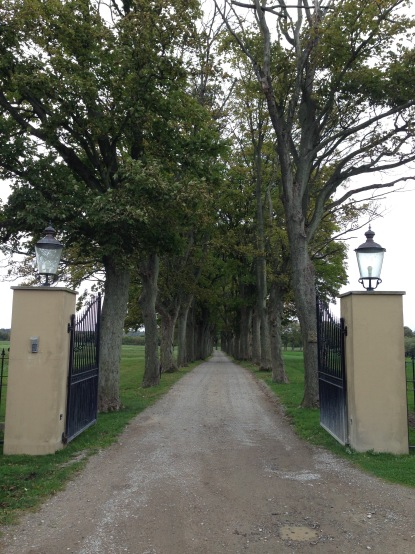 The tree-lined driveway to Peter Beier's factory