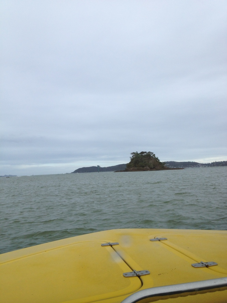 a view from the kayak
