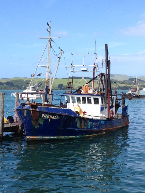 One of the many fishing boats bringing in regular hauls to the fish bars