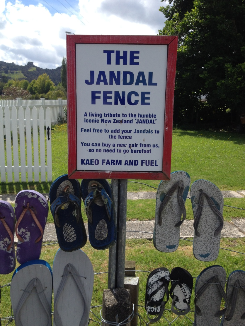 An explanation for the Jandal Fence