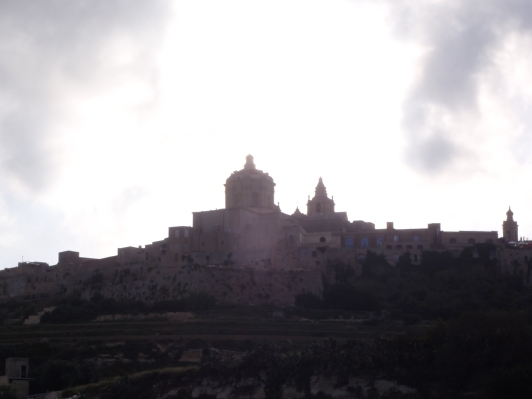 Mdina from the bus