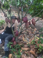Me and the cacao tree of Juan Flores
