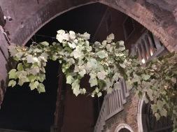 Their own grape vine