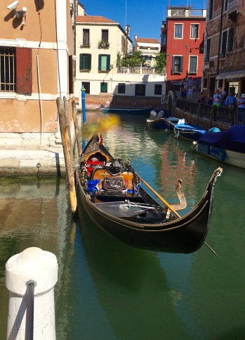 Gondola (with a wasp photo bomb!)