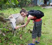 Donkey Time
